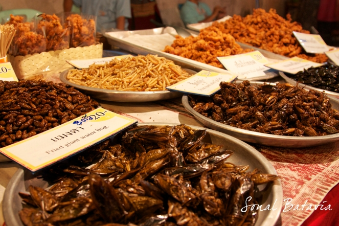 Fried Water Bugs and Silk worms at the Sunday Market.